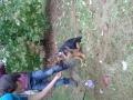 20141011_163547 (FILEminimizer)