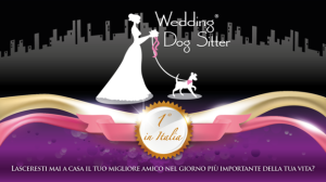wedding-dog-sitter-matrimonio