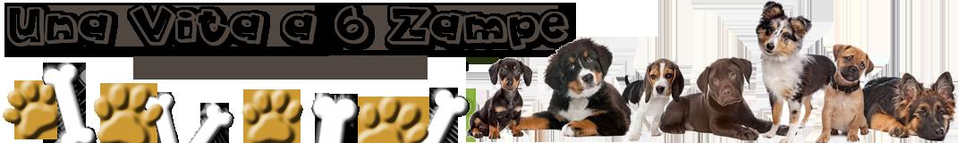 Una Vita a 6 Zampe | Educazione del Cane